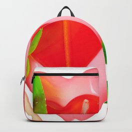 Lollipop in form of heart, watermelon and kiwi Backpack