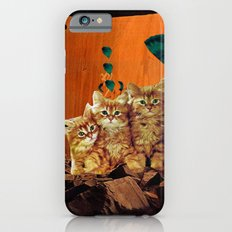 Kittens Hear All iPhone 6s Slim Case
