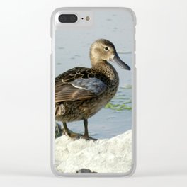 Female Cinnamon Teal Clear iPhone Case