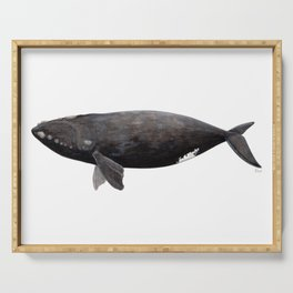 Northern right whale (Eubalaena glacialis) Serving Tray