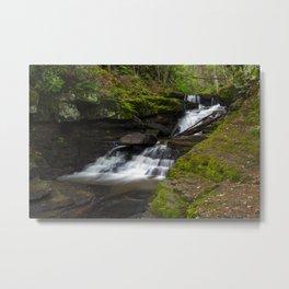 Pipestem Falls Metal Print