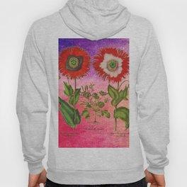 Vintage Botanical Collage - Poppies, Papaver Somniferum Hoody