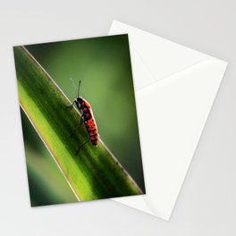 nature feelings Stationery Cards
