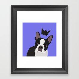 Royal Boston Terrier Framed Art Print