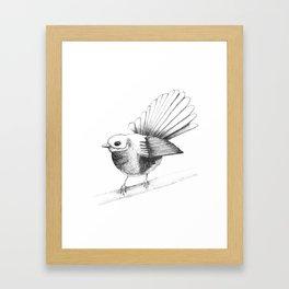 New Zealand Fantail Framed Art Print