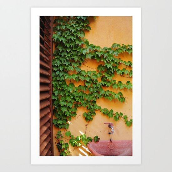 Ivy on the Terrace  Art Print