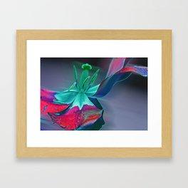 Fooling around Framed Art Print