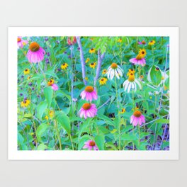 White and Purple Coneflowers and Yellow Rudbeckia Garden Art Print