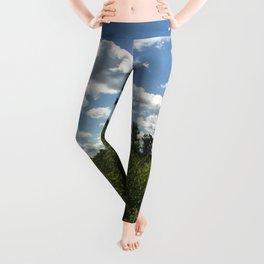 Upstate Trail Nonsense Leggings