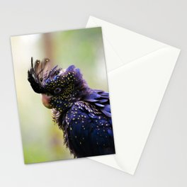 Red-tailed Black Cockatoo Stationery Cards