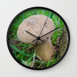 Pestle puffball fungus Wall Clock
