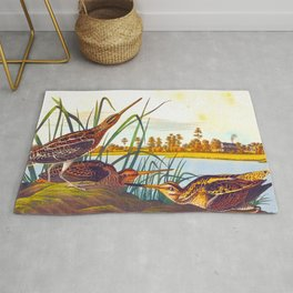 Snipe Duck Vintage Scientific Bird & Botanical Illustration Rug