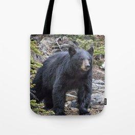 American Black Bear, No. 1 Tote Bag