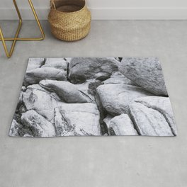 Big Rock 7408 Joshua Tree Rug