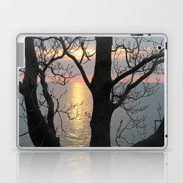 A Secret View Laptop & iPad Skin