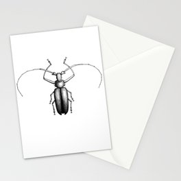 Beetle hand-drawn in the style of vintage etchings Stationery Cards