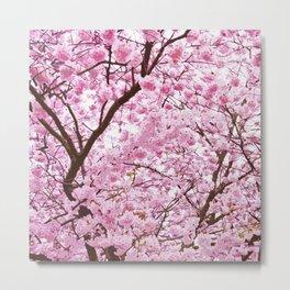 Pink Abstract Sakura Flowers Pattern Metal Print