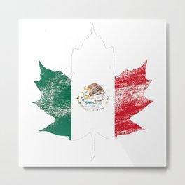 Mexico/Canada Metal Print