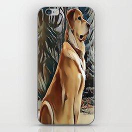 A Golden Retriever iPhone Skin