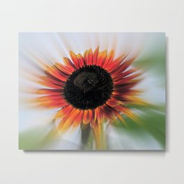 Sunflower Power Metal Print