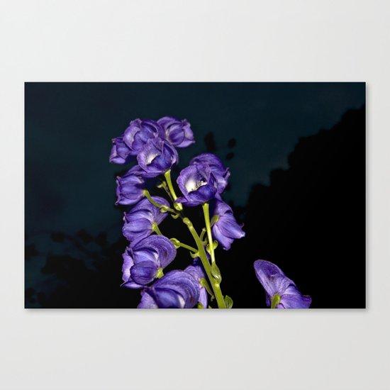 Dark Purple Elegance Canvas Print