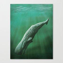 Sperm Whale Canvas Print