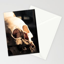 Skull - Mint in Box Stationery Cards