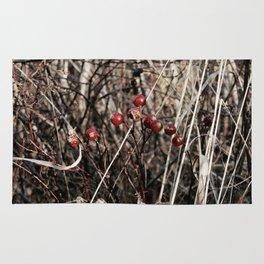 Thorned Berries of Winter Rug