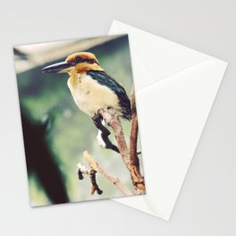 Guam Micronesian King Fisher Stationery Cards
