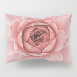 Pale Pink Succulent Pillow Sham