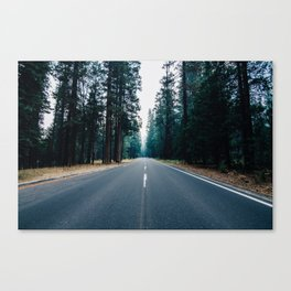 The Road Knows Canvas Print