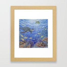 Sunshine Reef Framed Art Print