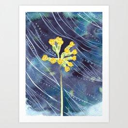 Cowslip Art Print