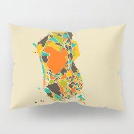 Rio map Pillow Sham