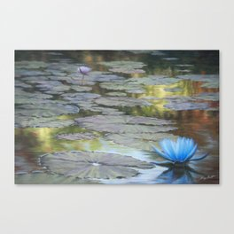 Water Lilies Afloat Canvas Print