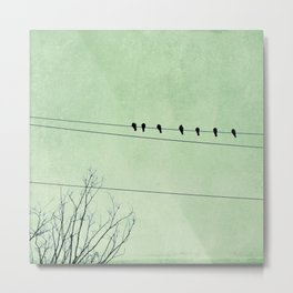 Birds on a Wire, no. 7 Metal Print