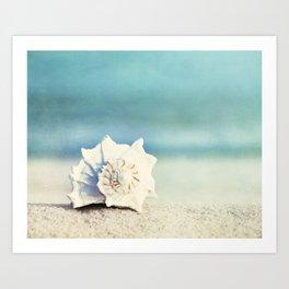 "Seashell on Beach Photography, ""Paradise"" Art Print"