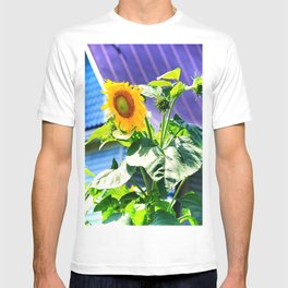 Sunflower at the Purple Roofed House in NOVA T-shirt
