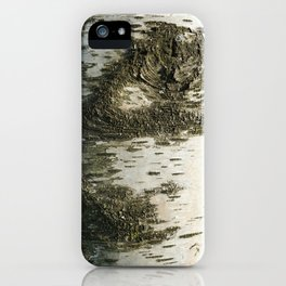 Birch Bark I iPhone Case