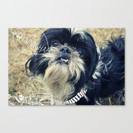 wookie dog Canvas Print