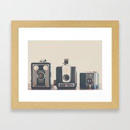 happy families ... Framed Art Print
