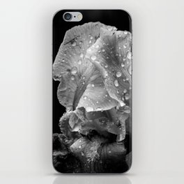 Black And White Flower After The Rain iPhone Skin