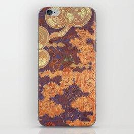 Hidden Patterns iPhone Skin