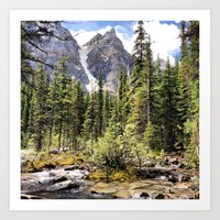 Mountain Ravine Art Print