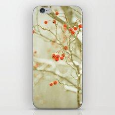 Hawthorne II iPhone & iPod Skin