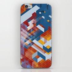 Boehme's Perfect Shoe iPhone & iPod Skin