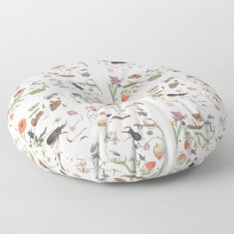 Common place miracles -Natural History Part II Floor Pillow