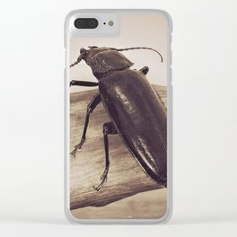 Viewpoints Clear iPhone Case