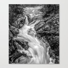 Smith River in Black and White Canvas Print