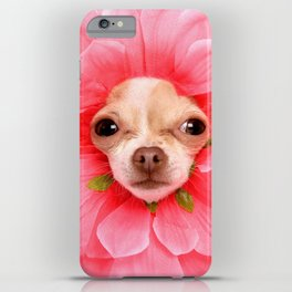 Chihuahua Flower iPhone Case